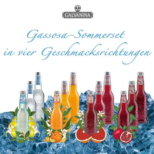 Gassosa Galvanina Sommerset